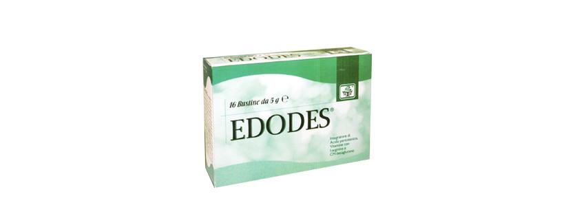 Edodes